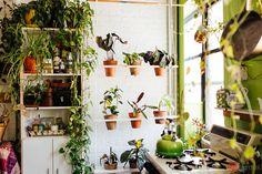 HOME & GARDEN: 500 plantes dans un appartement new-yorkais