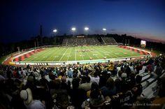 Alumni stadium Green Lawn, Baseball Field, Design Design, University, Design Inspiration, Tours, Spaces, Architecture, Modern