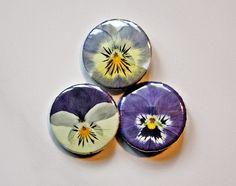 Dawanda   Echte Stiefmütterchen Blume Blüte Button 25mm