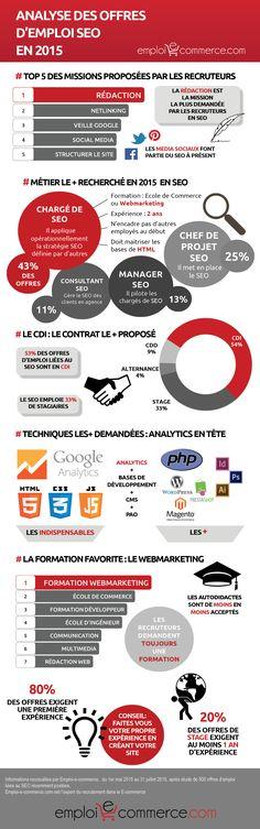 Infographie : profil-type des offres d'emploi #SEO en #France http://olo.one/1gGHite