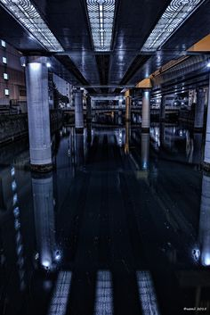 https://flic.kr/p/v8N6QU | On The Water | いつの日か水上から高架を鑑賞してみたいですね。  SIGMA DP1 Merrill  #cooljapan #100tokyo #東京夜間写真部 #elevatedexpressways