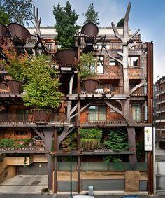 Casa na árvore moderna (2)