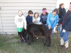 Guided Nature Center Tour Fayetteville, NC #Kids #Events