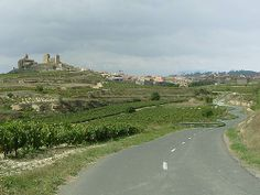Wine route of Bike Spain Tours