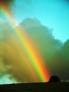 gorgeous rainbow !  Our  Promise