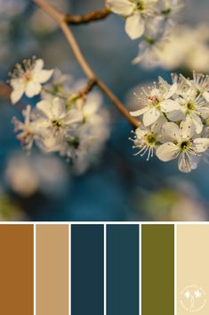 I am a full-time freelance color palette, surface pattern designer and artist for print on demand shops, such as RedBubble, and Art of Where. Blue Colour Palette, Colour Schemes, Color Combinations, Pantone, Montage Photo, Color Balance, Design Seeds, Colour Board, World Of Color