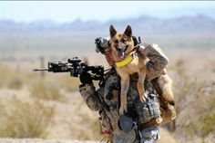 Our combat forces carry a heavy load, including sometimes their canine partners. | https://www.facebook.com/petsforpatriots