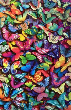 Illusionary picture of some colorful butterflies.