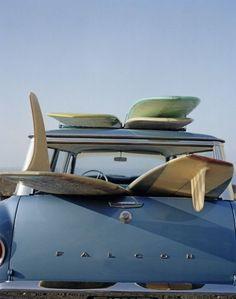let's go surfing // surfing safari