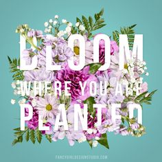 Bloom Where You Are Planted' Floral Typography by Fancy Girl Designs Flower Typography, Bold Typography, Typography Layout, Typography Quotes, Typography Inspiration, Lettering, Typography Poster, Typography Alphabet, Japanese Typography