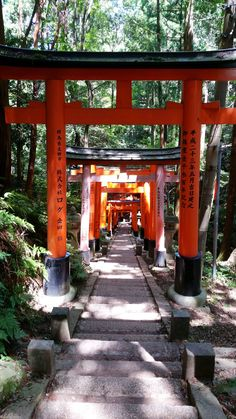 things to do in japan. backpacking east asia travel tips. places to visit japan, in the world bucket list. Asia Travel, Japan Travel, Kyoto Travel Guide, Kyoto Itinerary, Nijo Castle, Winter In Japan, Train Route, Buses And Trains, Tourist Map