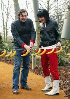 Noel Fielding and Julian Barratt are bananas X)