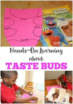 A fun and easy hands-on activity for learning about taste buds with kids!