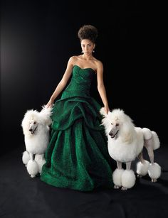 Love the dress...and the dogs..