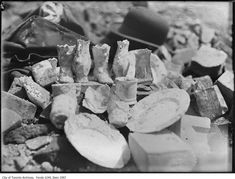 On the night of April 1904 and the morning of April a Toronto fire decimated downtown Toronto and took with it over 100 buildings Fire Hall, Yonge Street, The Great Fire, Downtown Toronto, Union Station, Justin Trudeau, Old Photographs, Prime Minister, Comic Books
