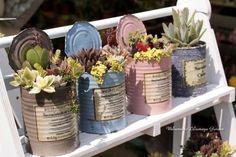 Succlent – Flor Birri – Succulent diy ideas - How to Make Gardening Succulents In Containers, Cacti And Succulents, Planting Succulents, Succulent Gardening, Container Gardening, Tin Can Crafts, Diy And Crafts, Garden Crafts, Garden Art