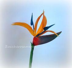{A colorful gumpaste Bird of Paradise by Silvia Tartari}