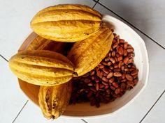 #CACAO: LE RICETTE PER LA BELLEZZA Buono e non solo: il cacao è un ingrediente importante per la salute e per la bellezza del corpo e del viso