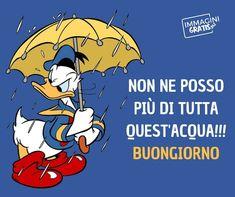 Italian Memes, Good Mood, Vignettes, Disney, Good Morning, Snoopy, Animation, Fictional Characters, Genere