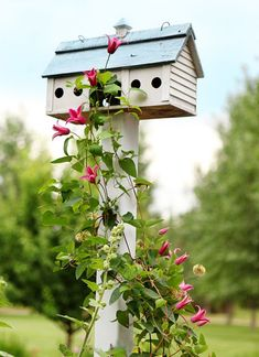Birdhouse with Clematis. I have the clematis all i need is a birdhouse. Beautiful Birds, Beautiful Gardens, Garden Cottage, Flower Boxes, Dream Garden, Garden Inspiration, Bird Houses, Outdoor Gardens, Garden Design