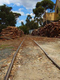 Gold Rush Tracks in Ballarat Visit us on http://cbddentalballarat.com.au
