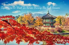 Top Places To Visit In Korea During The Fall Season   allkpop.com/buzz