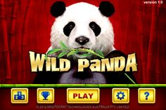 Wild Panda slot game is an Aristocrat release with a whopping 100 paylines. The main objective is to trigger the Wild Panda free spins bonus game. Free Slots Casino, Online Casino Slots, Casino Slot Games, Slot Online, Online Gambling, Panda Love, Panda Bear, Panda Online, Wild Panda