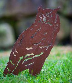 Rusty Horned Owl