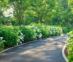 Sinuous Driveway - The wonderful flower border creates dreamy driveway and emphasises a summer garden feel to the functional space. >> Click for more Driveway Ideas!