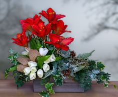 Amaryllis Garden Christmas Arrangement - Christmas Arrangement
