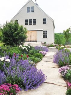 Give a straight walkway graceful curves by planting perennials that gently tiptoe onto the surface. Here, catmint sprawls at regular intervals to create a sense of rhythm and repetition. Contemporary Landscape by Ann Kearsley Design House Landscape, Landscape Design, Garden Design, Path Design, Design Ideas, Bed Design, House Design, Stone Garden Paths, Garden Stones