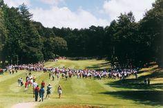 Golf fans..