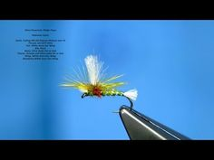 Tying an Olive Parachute Midge Pupa by Davie McPhail - YouTube