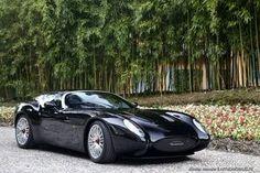 Villa d'Este 2015 : concept car Maserati Mostro de Zagato.