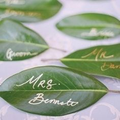 Green Wedding Colors: Gold pen + leaves = unique DIY placecards for a rustic outdoor wedding. Fall Wedding Colors, Wedding Flowers, Spring Wedding, Wedding Greenery, Diy Place Cards, Name Place Cards, Name Cards, Wedding Stationery Inspiration, Wedding Inspiration