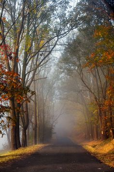 Fog Lifting on Spring Hill  October 18, 2007