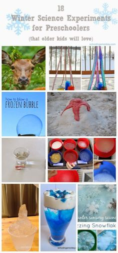 18 Winter Science Experiments for Preschoolers - Schooling a Monkey If you love winter, try these fun winter science experiments for preschool! Preschoolers will love these winter science ideas. Winter Activities For Kids, Winter Crafts For Kids, Kids Learning Activities, Winter Fun, Stem Activities, Winter Theme, Baby Activites, Winter Ideas, Science Experiments For Preschoolers
