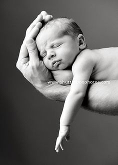 Google Image Result for http://www.shutterboxphotos.com/blog/wp-content/uploads/2009/10/newborn-photos-seattle.jpg