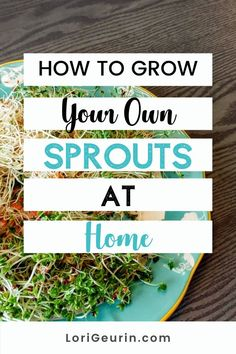 Learn how to grow sprouts from home in this quick and easy tutorial and video. Sprouts are fun and easy to grow and so nutritious to eat. You can grow broccoli, mung bean, alfalfa, and other types of sprouts using trays or Mason jars.    #howtogrowsprouts #sprouts #broccolisprouts #growsproutsindoors #growsproutsinatray #microgreens Health And Wellbeing, Health Benefits, Stress Management Course, Diy Crafts And Hobbies, Growing Sprouts, Good Sources Of Calcium, Broccoli Sprouts, Female Hormones, Hobbies To Try