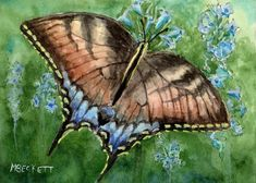 ACEO TW JUN Original Painting Tiger Swallowtail butterfly insect animal #Impressionism