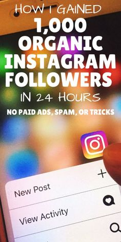 The one strategy I used to gain 1,000 Instagram followers in 24 hours and how you can use the same strategy to grow your social media following organically without paid ads, spamming, or other time-wasting tactics.