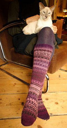 Long fairisle socks. Lilac point siamese cat.