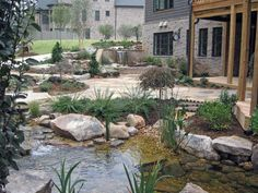 I adore this look in the foreground of the photo.  Like your own little mountain stream right outside the back door.