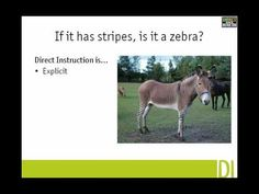 History of the Direct Instruction intervention teaching method Teaching Techniques, Teaching Methods, Kindergarten Classroom, Classroom Ideas, Direct Instruction, Circle Time, Zebras, School Days, Behavior