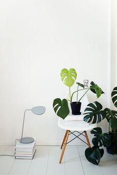 Leaf table lamp by @muuto - Photo by Ilenia Martini @ilemartini