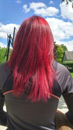 New Fun Hair Color Age Beautiful Dark Plum Brown 4v