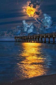 Full Harvest Moon over Juno Beach... | sky | | night sky | | nature | | amazing nature | #nature #amazingnature https://biopop.com/