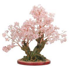 Bonsai rosa