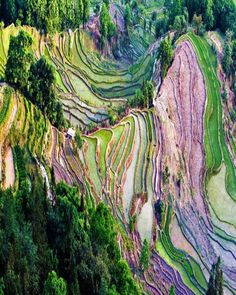 The Honhe Hani Rice Terraces in #China run down the slopes of the Ailao Mountains to the banks of the Hong River. Over 1300 years the Hani people have developed complex irrigation system for agriculture. Spread out over 82 villages this group upholds traditional social and religious structure which is based on the spiritual relationship between man and nature.