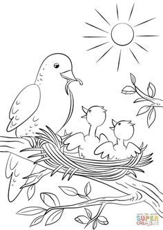 Coloring Pages Of Baby Chicks Hand Embroidery Patterns Free, Embroidery Flowers Pattern, Bird Embroidery, Bird Coloring Pages, Coloring Sheets For Kids, Art Drawings For Kids, Drawing For Kids, Creations, Baby Chicks